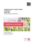 Criminal Law II: Youth Justice (Volume I): 2016-17 by Ronda Bessner
